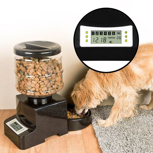 futterautomat katzen hunde futterspender mit zeitschaltuhr. Black Bedroom Furniture Sets. Home Design Ideas