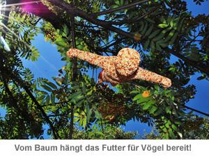 Vogelfutter - Bungee Jumping - 2