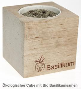 Ecocube Basilikum - 2