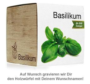 Ecocube Basilikum - 3
