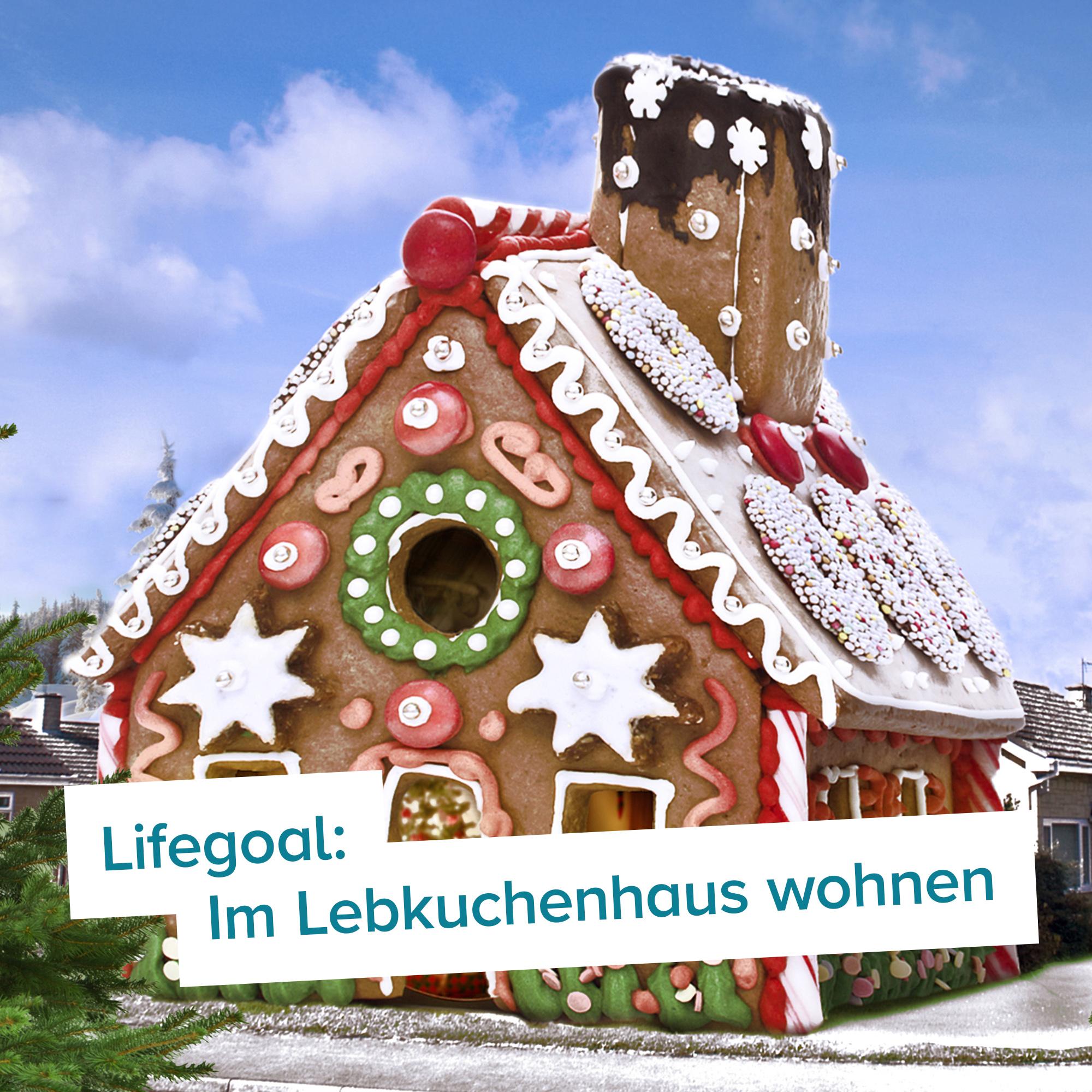 Riesen Lebkuchenhaus – Eigenheim zum Selberbacken