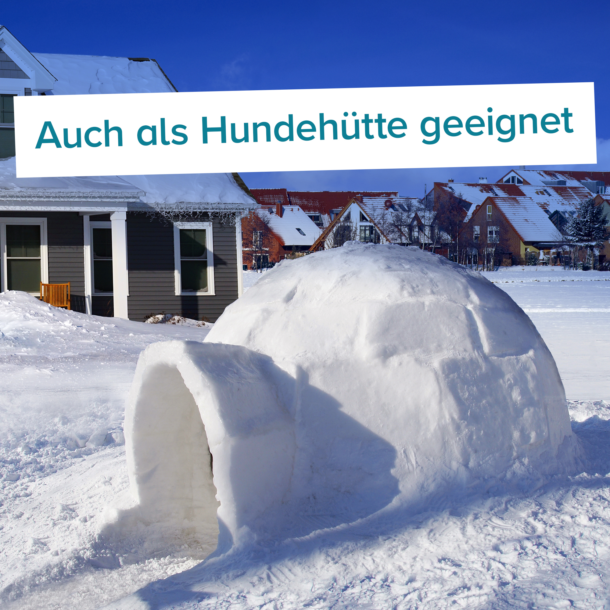 Iglu Bausatz für zuhause - Igloo yourself - 7