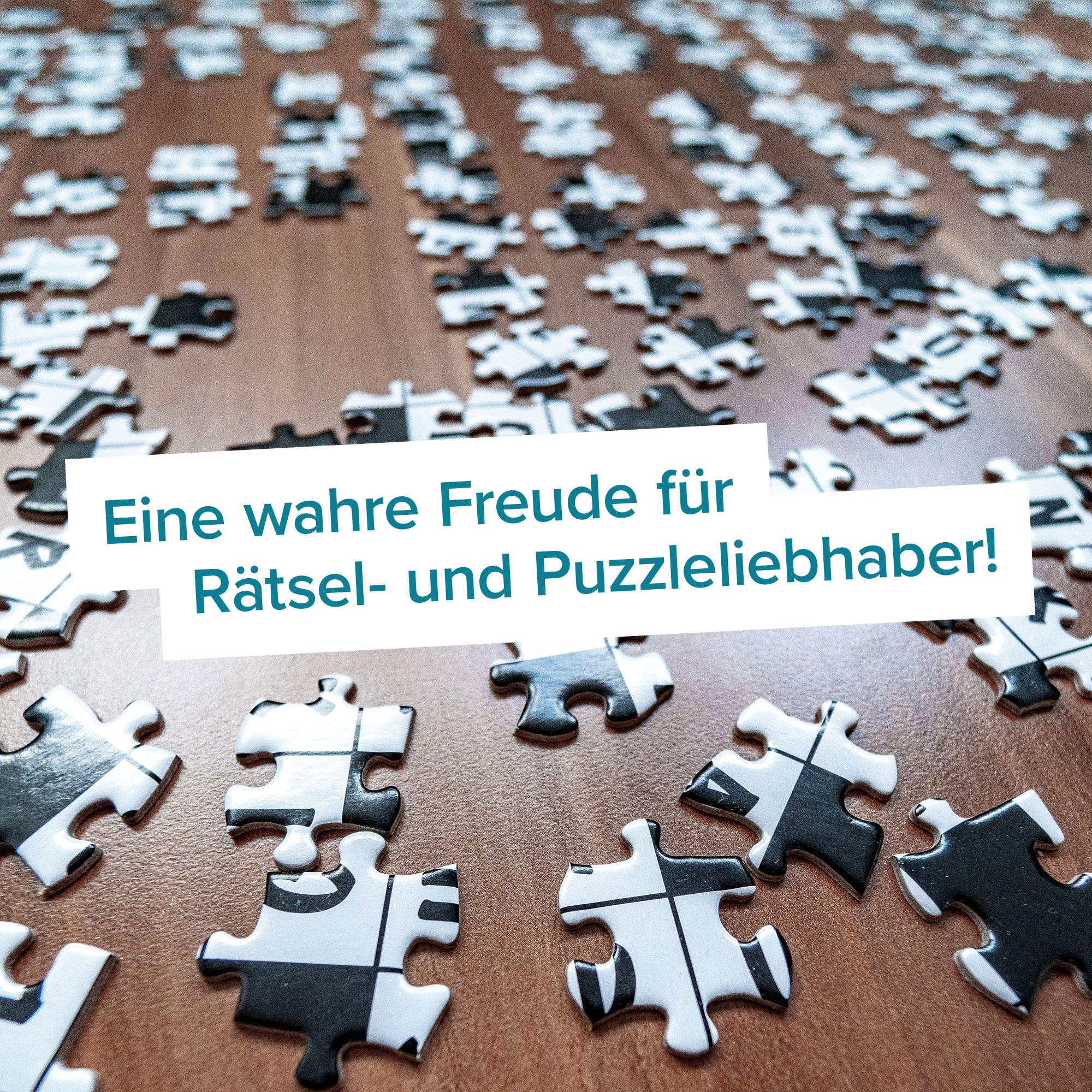 Das Rätsel Eines Puzzles