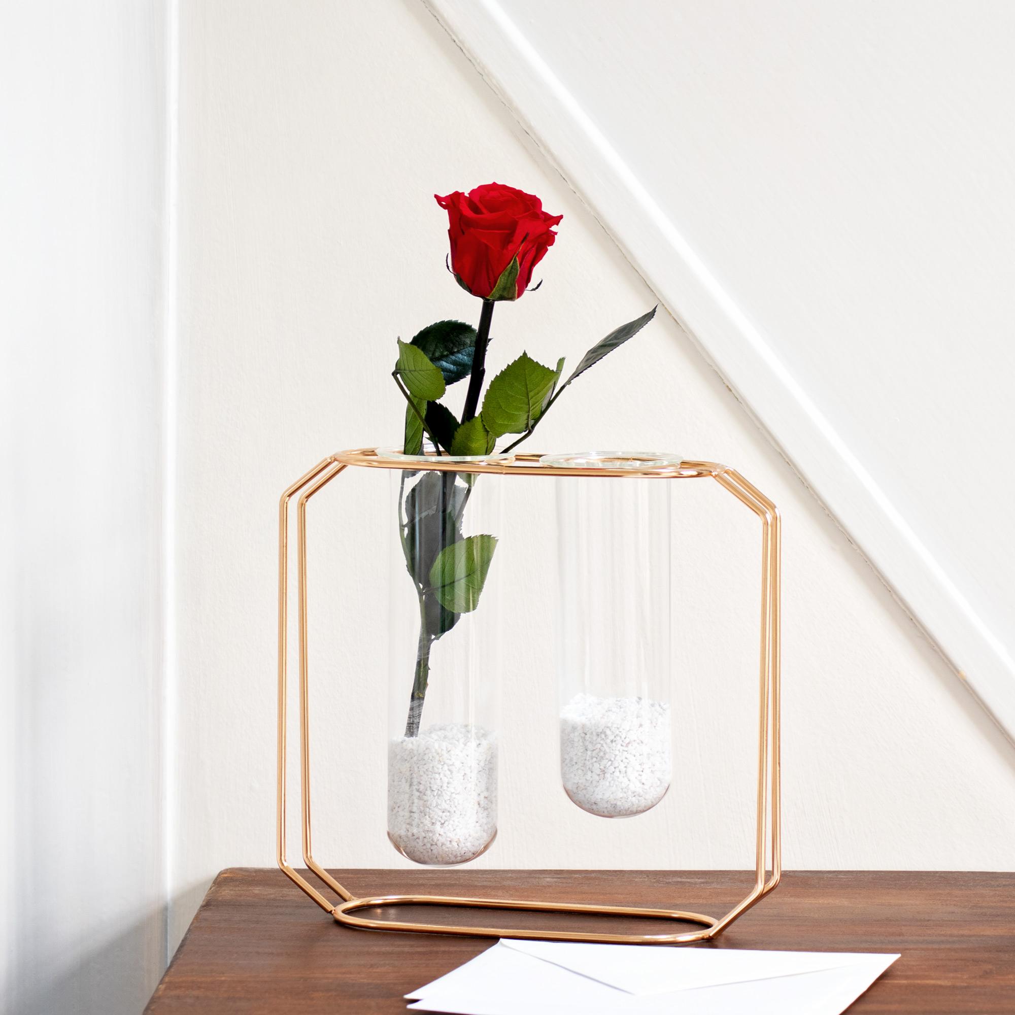 rose imp rissable un cadeau extraordinaire. Black Bedroom Furniture Sets. Home Design Ideas