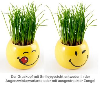 Graskopf mit Smiley Gesicht - 3