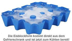 Bierkühler - Eisblockform für Bierkisten - 0,5 l Flaschen - 4