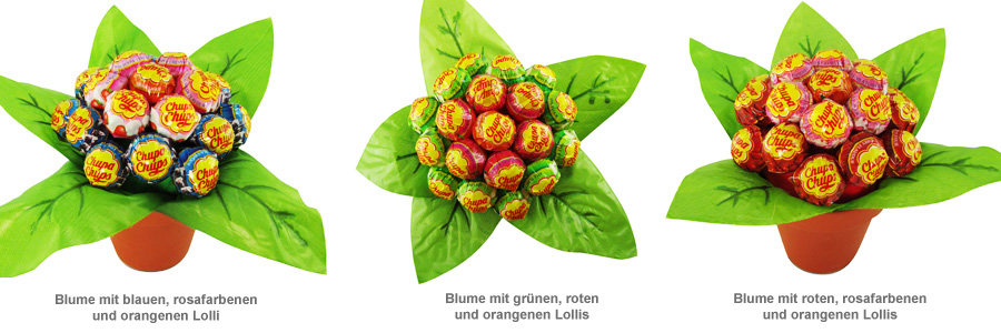 Lolli Blume - 3