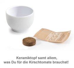 Kirschtomate im Mini-Keramiktopf - 2