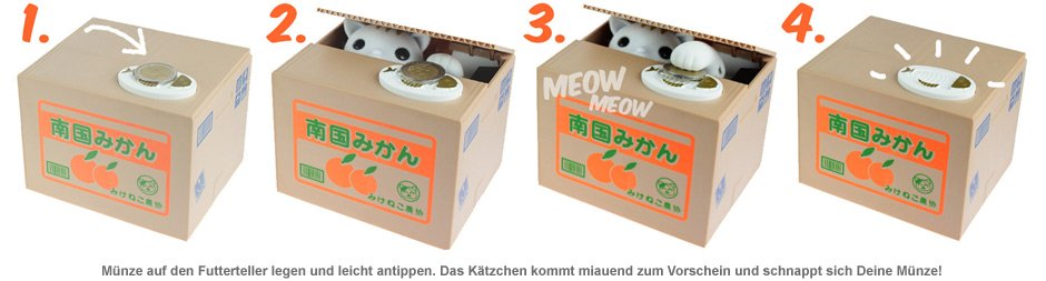 Katzen Spardose - Kitty Bank - 2
