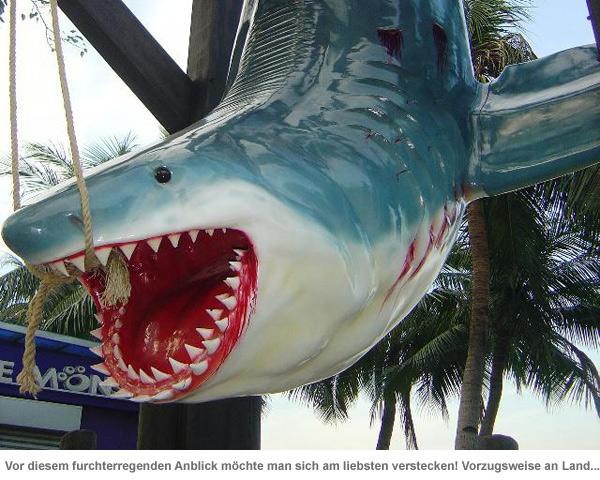 Weißer Hai Angler Trophäe - lebensgroß - 2