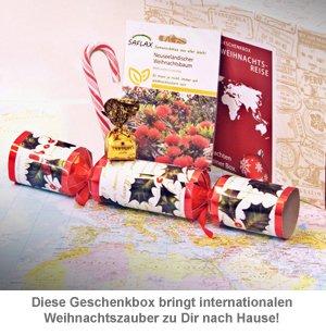 Weihnachtsbox - Weihnachtliche Weltreise Geschenkbox - 2