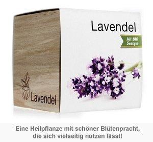 Ecocube Lavendel - 2