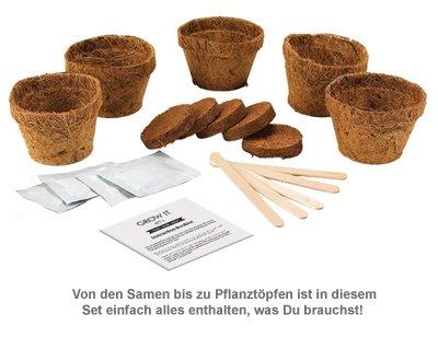 Bier Hopfen Set - Selber pflanzen - 2