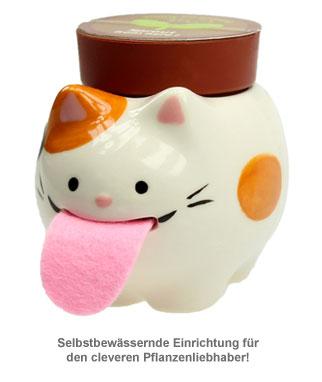 Wilde Erdbeere im Peropon Topf - Katze - 2