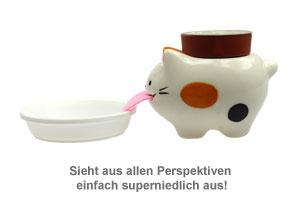 Wilde Erdbeere im Peropon Topf - Katze - 3