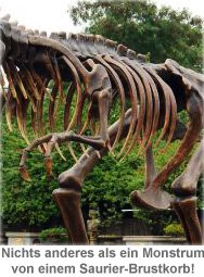 Tyrannosaurus Rex lebensgroß - 2
