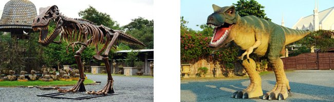 Tyrannosaurus Rex lebensgroß - 4