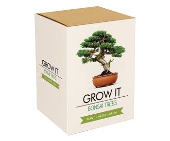 Bonsai Baum Set - Selber pflanzen - 4