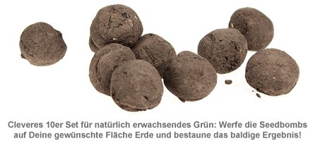 Seedbombs - Wilde Wiese - 2