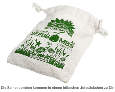 Seedbombs - Wilde Wiese - 3