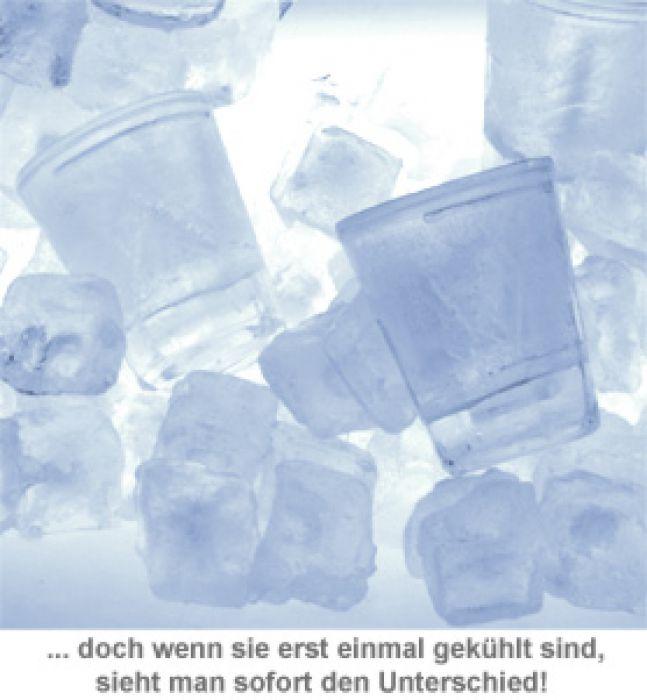 Doppelwandige Kühl Schnapsgläser - 4er Set