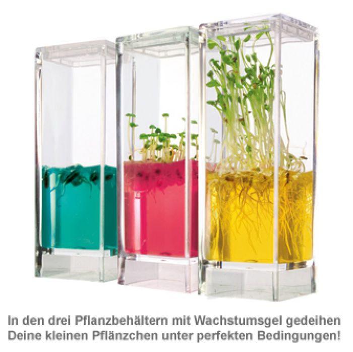 Gel Gewächshaus - Ökosystem Garten