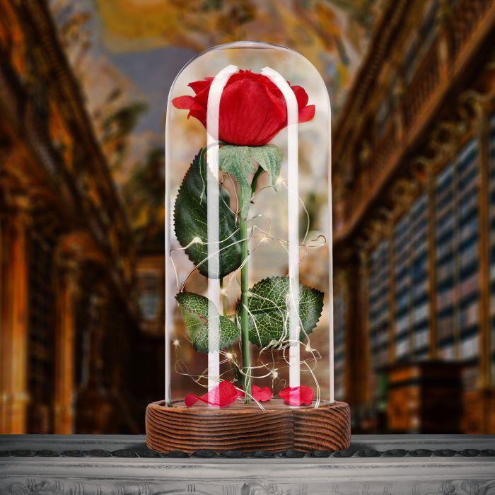 Rose unter Glasglocke