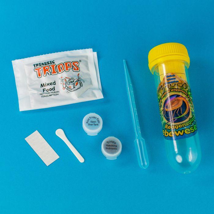 Triops - Züchte Deine Urzeitkrebse