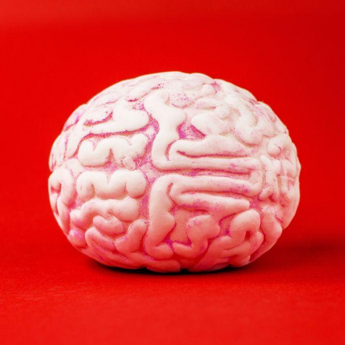 Stressball - Gehirn