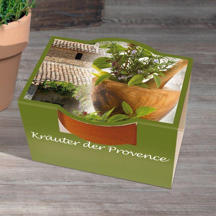 10er Blumenset zum Selberpflanzen - Kräuter der Provence