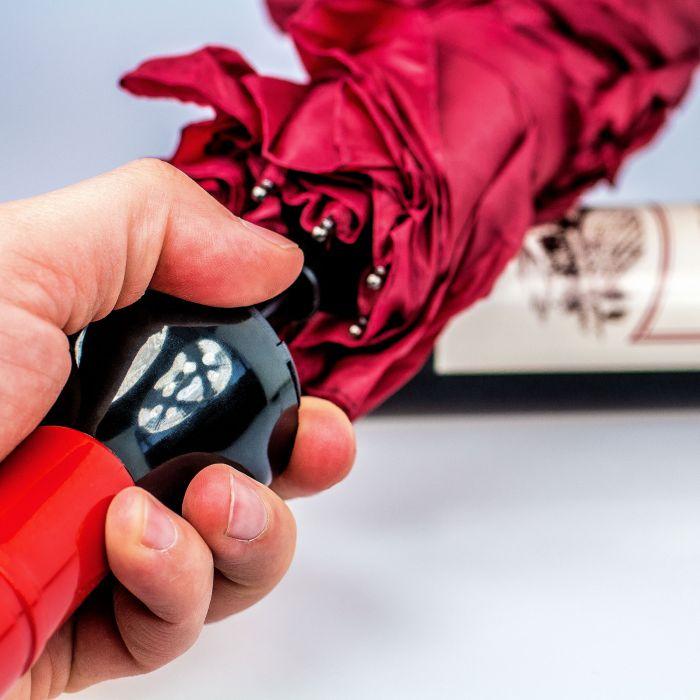 Regenschirm - Weinflasche