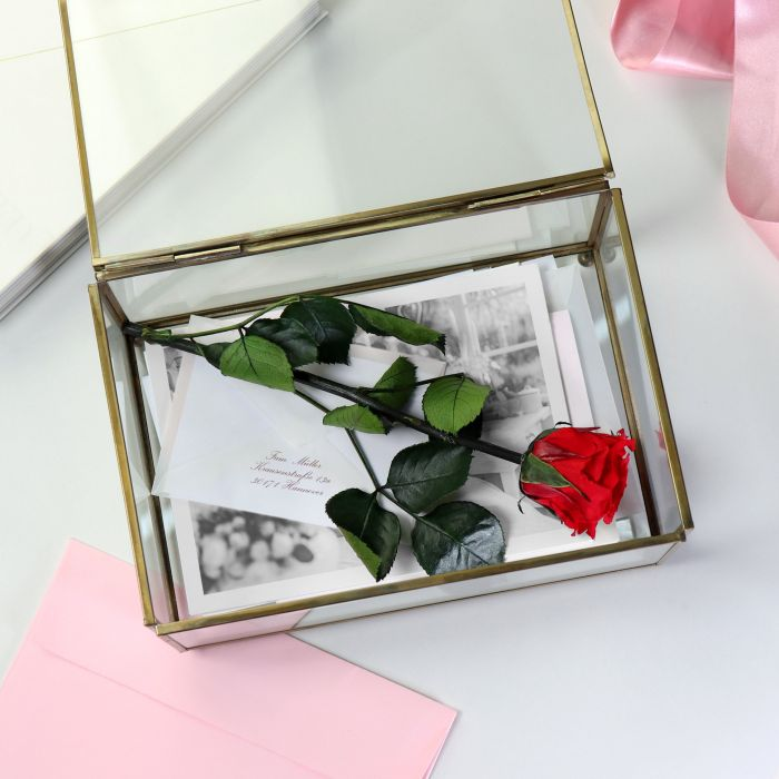 Rose impérissable – Un cadeau extraordinaire