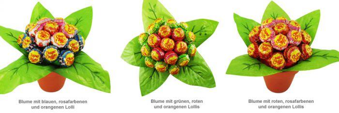 Lolli Blume