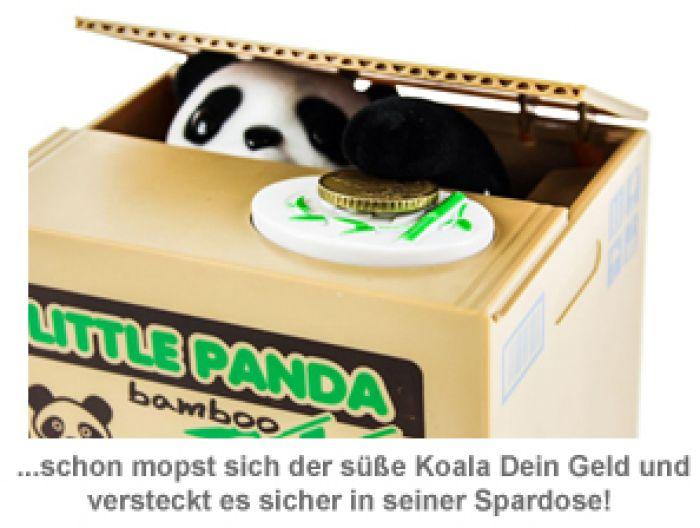 Panda Spardose mit Sound