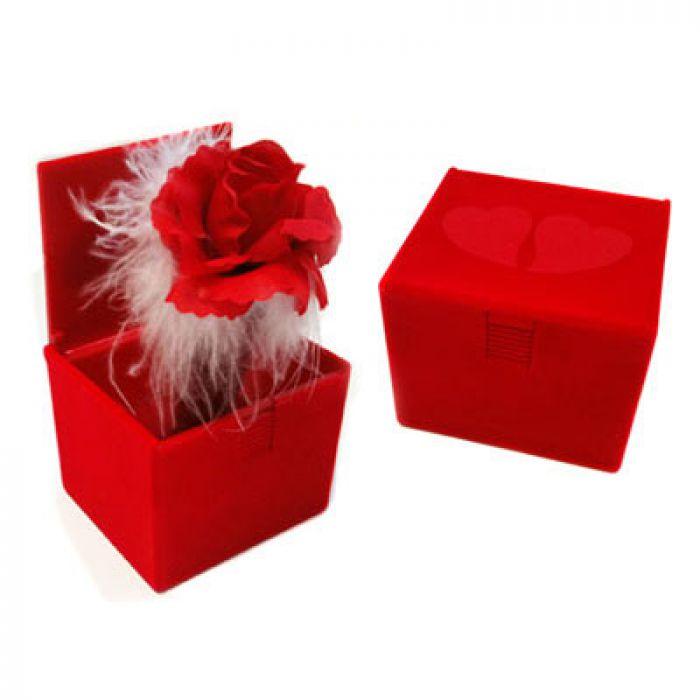 Rose dans la boîte