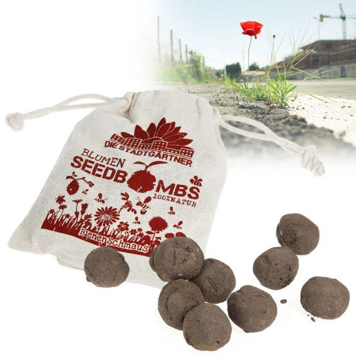 Seedbombs - Régal d'abeilles