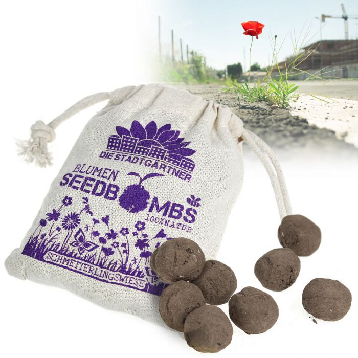 Seedbombs - Schmetterlingswiese