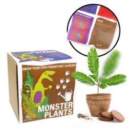 Monstergarten Set - Selber pflanzen