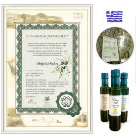 Olivenbaum Patenschaft - Geschenke zum 60. Geburtstag