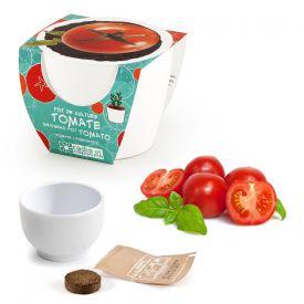 Tomate cerise dans mini pot en cramique