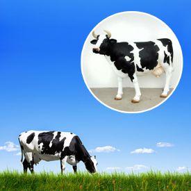 Kuh lebensgro - coole Garten Deko
